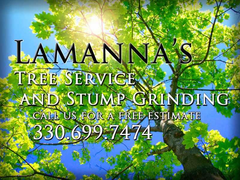 Lamanna's Tree Service and Stump Grinding Services